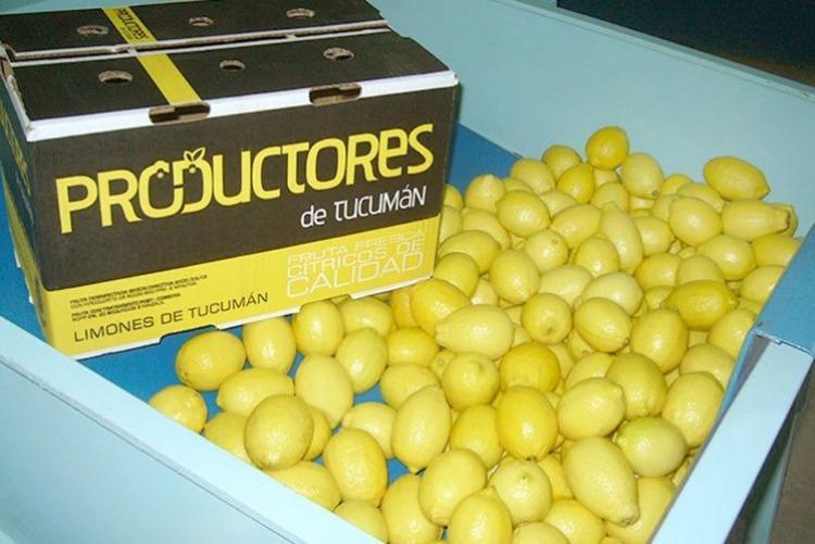 Estados Unidos extiende la prohibición de ingreso de limones argentinos
