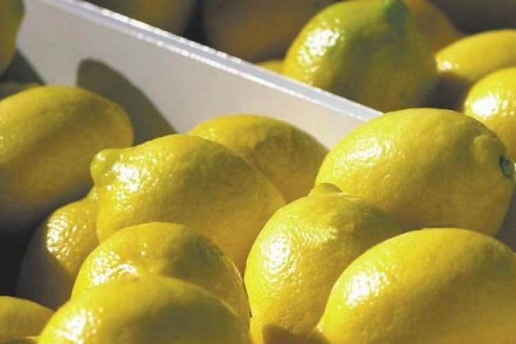 Vuelven las trabas para los limones en Estados Unidos