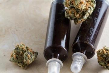 El Gobierno sigue sin reglamentar la ley de cannabis medicinal