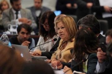 """Graciela Camaño aseguró que la reforma laboral """"es un engendro"""" y que """"hay que tirarla al tacho"""""""