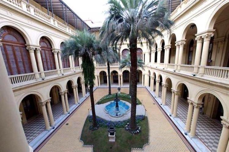 El Gobierno gastó $235 mil en una palmera para Casa Rosada