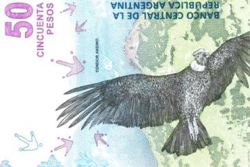 El gobierno eliminó las Malvinas del billete de 50 pesos