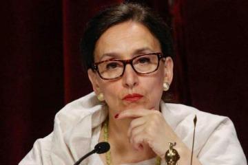 La prohibición tribunera de Michetti generó malestar en todo el Senado
