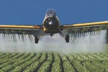 Cientos de organizaciones le exigen a Vidal dejar sin efecto una resolución del Ministerio de Agroindustria