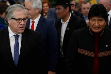 Dos informes internacionales prueban que no hubo fraude en Bolivia y que la OEA operó por el golpe de Estado