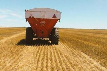 La sequía en Australia beneficia al trigo argentino que espera una venta récord