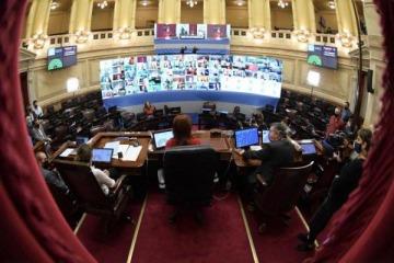Cristina encabezó con éxito una prueba de sesión y votación remota con 70 senadores