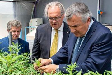 Cannabis medicinal: se inauguraron en Jujuy el primer laboratorio y el primer producto de industria nacional