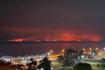 Delitos ambientales: ¿Qué hay detrás de los incendios en las áreas protegidas?