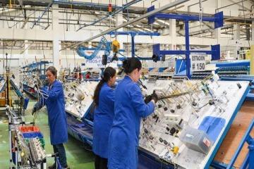 Buenos números: la actividad industrial creció y se registró una fuerte impronta en la construcción