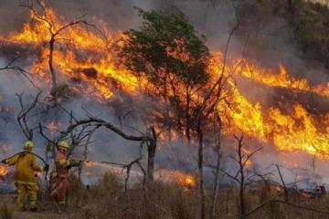 Incendios forestales en cinco provincias: cómo está la situación que acumula tres personas fallecidas